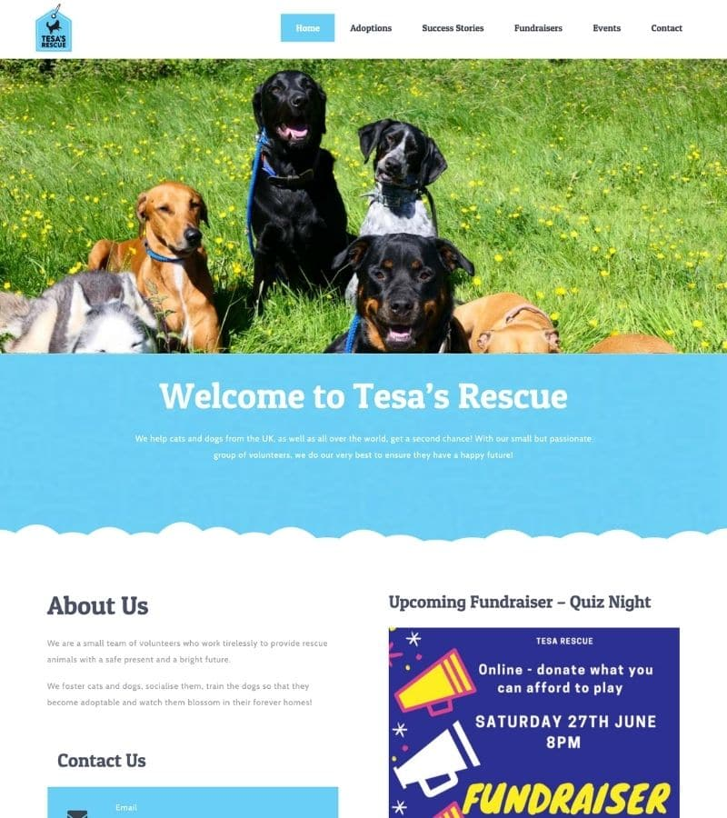 Tesa's rescue full page